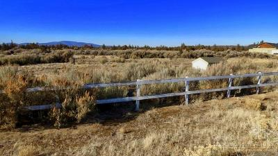 Prineville Residential Lots & Land For Sale: 12527 SE Lost Lake Drive