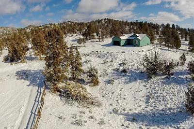 Prineville Single Family Home For Sale: 23300 SE Paulina Highway