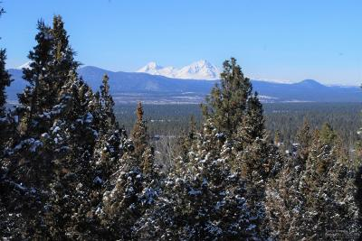 Bend Residential Lots & Land For Sale: 2905 NW Fitzgerald Court