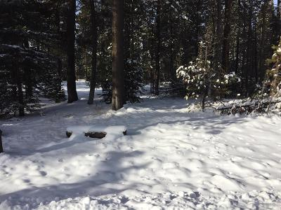 Bend Residential Lots & Land For Sale: 55907 Savage Drive Drive