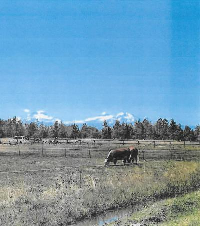 Redmond Residential Lots & Land For Sale: 4440 NE 29th Court