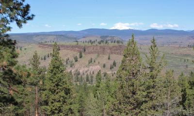 Culver Residential Lots & Land For Sale: 13802 SW Airstrip Lane