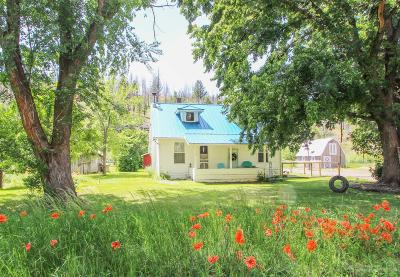 Single Family Home For Sale: 25196 Hwy 395 S