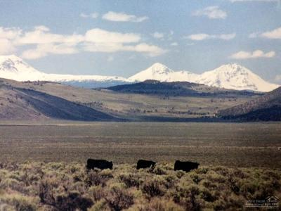 bend Farm & Ranch For Sale: 56200 Pine Mountain Road