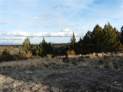 Residential Lots & Land For Sale: 5069 Southwest Brandy Lane