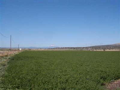 Metolius Farm & Ranch For Sale: Galloway Lane