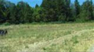Residential Lots & Land For Sale: 146 Plumlee Way