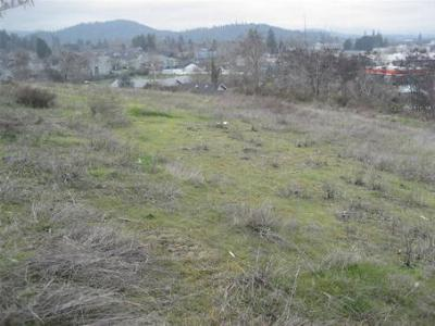Residential Lots & Land For Sale: 1602 Southeast Hilltop View