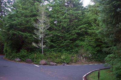Salishan Hills Residential Lots & Land For Sale: 481 Salishan Hills Dr