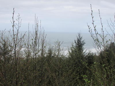 Depoe Bay, Gleneden Beach, Lincoln City, Newport, Otter Rock, Seal Rock, South Beach, Tidewater, Toledo, Waldport, Yachats Residential Lots & Land For Sale: TL 6600 Gimlet Ln