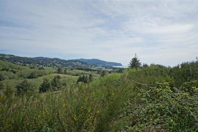Neskowin Residential Lots & Land For Sale: Lot 13 P2 Heron View Dr