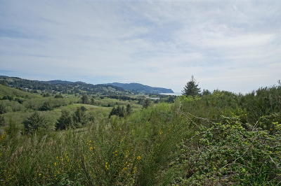 Neskowin Residential Lots & Land For Sale: Lot 13 P1 Heron View Dr