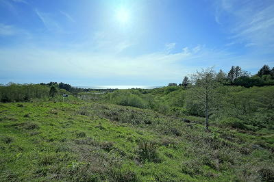 Neskowin Residential Lots & Land For Sale: Lot 56 Pelican Point Dr