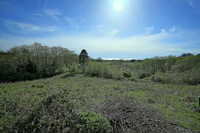 Neskowin OR Residential Lots & Land For Sale: $209,000