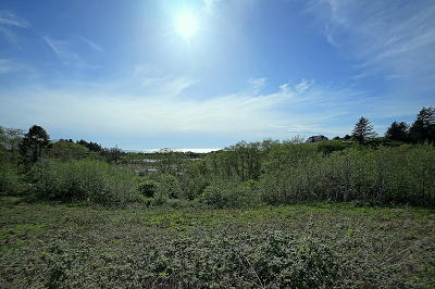 Neskowin OR Residential Lots & Land For Sale: $209,900