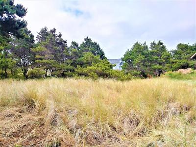 Depoe Bay, Gleneden Beach, Lincoln City, Newport, Otter Rock, Seal Rock, South Beach, Tidewater, Toledo, Waldport, Yachats Residential Lots & Land For Sale: 1705 NW Marlin St