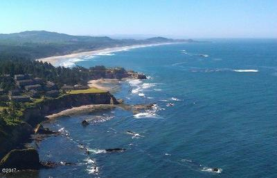 Depoe Bay, Gleneden Beach, Lincoln City, Newport, Otter Rock, Seal Rock, South Beach, Tidewater, Toledo, Waldport, Yachats Condo/Townhouse For Sale: 310 Otter Crest #136-7