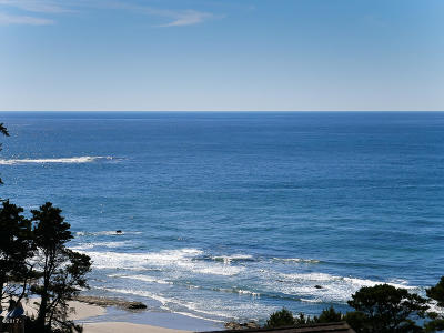 Depoe Bay, Gleneden Beach, Lincoln City, Otter Rock Condo/Townhouse For Sale: 301 Otter Crest Loop #320-321