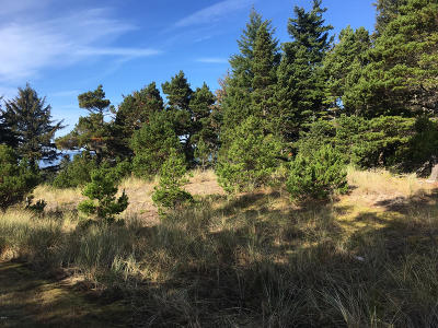 Depoe Bay, Gleneden Beach, Lincoln City, Newport, Otter Rock, Seal Rock, South Beach, Tidewater, Toledo, Waldport, Yachats Residential Lots & Land For Sale: 3709 NW Shore View Dr
