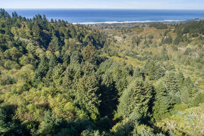 Neskowin Residential Lots & Land For Sale: TL 1000 Sunbow