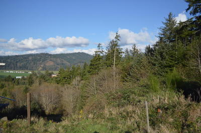 Pacific City Residential Lots & Land For Sale: Lot 1 Ocean Valley View