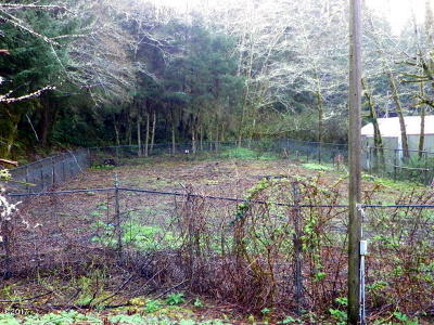 Newport OR Residential Lots & Land Closed: $9,500