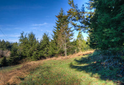 Depoe Bay, Gleneden Beach, Lincoln City, Newport, Otter Rock, Seal Rock, South Beach, Tidewater, Toledo, Waldport, Yachats Residential Lots & Land For Sale: 200 N Bayview Rd