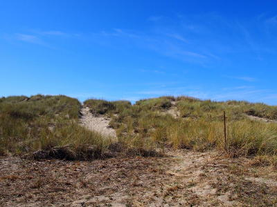 Pacific City Residential Lots & Land For Sale: TL2000 Sunset Dr