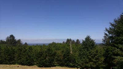 Neskowin Residential Lots & Land For Sale: TL 4100 Pacific Overlook Dr