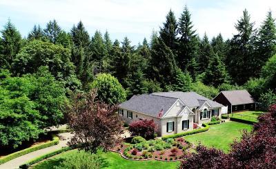 Siletz Single Family Home For Sale: 22535 Siletz Hwy