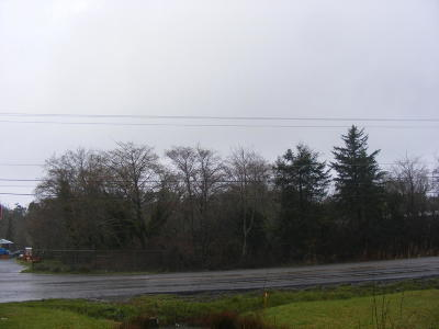 Commercial Lots & Land For Sale: 100 SW Coast Hwy