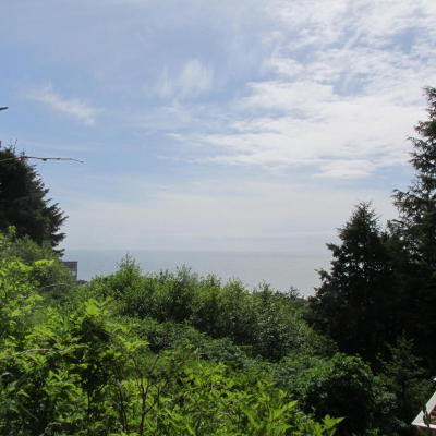 Depoe Bay, Gleneden Beach, Lincoln City, Newport, Otter Rock, Seal Rock, South Beach, Tidewater, Toledo, Waldport, Yachats Residential Lots & Land For Sale: TL 7600 Hanley Drive
