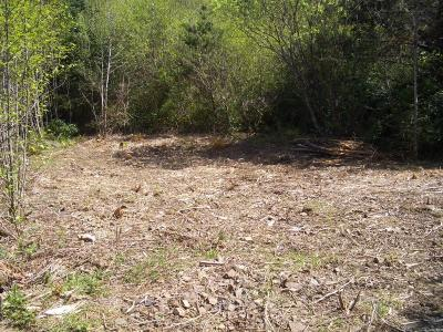 Depoe Bay Residential Lots & Land For Sale: Southpoint Street