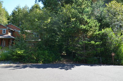 Depoe Bay Residential Lots & Land For Sale: 180 SW Gull Station