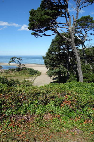 Lincoln City Residential Lots & Land For Sale: 7201 Wallace