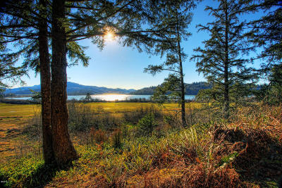 Pacific City Residential Lots & Land For Sale: TL 1206 Brooten Road