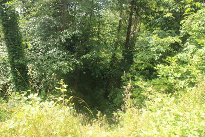 Newport Residential Lots & Land For Sale: TL 11300 SE 2nd Street