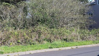 Lincoln City Residential Lots & Land For Sale: 4626 SW Coast Ave