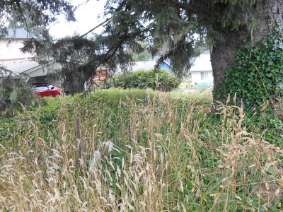 Lincoln City Residential Lots & Land For Sale: 3400 blk NW Port Ave