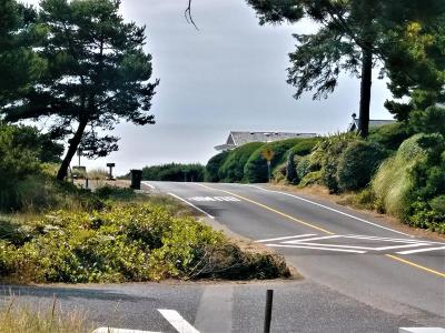 Depoe Bay, Gleneden Beach, Lincoln City, Newport, Otter Rock, Seal Rock, South Beach, Tidewater, Toledo, Waldport, Yachats Residential Lots & Land For Sale: 1817 NW Sandpiper Dr