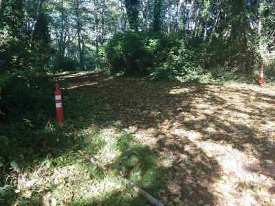 Residential Lots & Land Sold: T/L 2900 NE 19th St