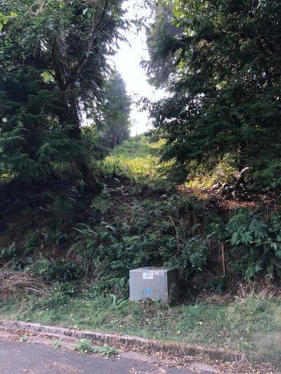 Residential Lots & Land For Sale: 2490 NE 27th Drive