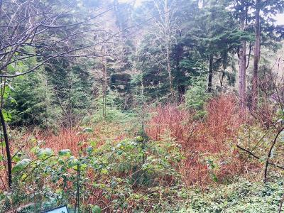 Depoe Bay, Gleneden Beach, Lincoln City, Newport, Otter Rock, Seal Rock, South Beach, Tidewater, Toledo, Waldport, Yachats Residential Lots & Land For Sale: 23 Indian Trail NE