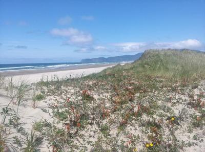 Pacific City Residential Lots & Land For Sale: TL 104 Roma Avenue