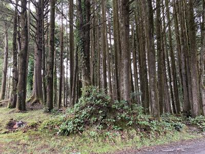 Depoe Bay, Gleneden Beach, Lincoln City, Newport, Otter Rock, Seal Rock, South Beach, Tidewater, Toledo, Waldport, Yachats Residential Lots & Land For Sale: TL1100 Sw Bard Rd