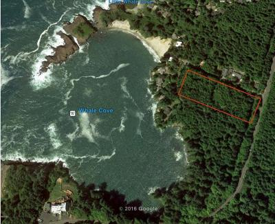 Depoe Bay Residential Lots & Land For Sale: 100-1600 SW McDonald
