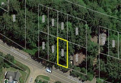 Pacific City Residential Lots & Land For Sale: TL 15600 & Tl16000 Sandlake Rd