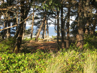Depoe Bay, Gleneden Beach, Lincoln City, Newport, Otter Rock, Seal Rock, South Beach, Tidewater, Toledo, Waldport, Yachats Residential Lots & Land For Sale: 1810 NW Oceanview