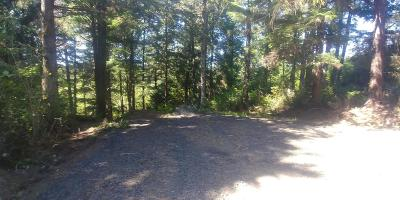 Depoe Bay, Gleneden Beach, Lincoln City, Newport, Otter Rock, Seal Rock, South Beach, Tidewater, Toledo, Waldport, Yachats Residential Lots & Land For Sale: TL 900 Read Dr