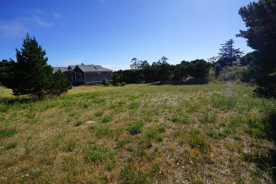 Depoe Bay, Gleneden Beach, Lincoln City, Newport, Otter Rock, Seal Rock, South Beach, Tidewater, Toledo, Waldport, Yachats Residential Lots & Land For Sale: 3022 NW Sandpiper Cir